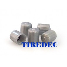 Gray Tire Valve Caps [1000PCS]